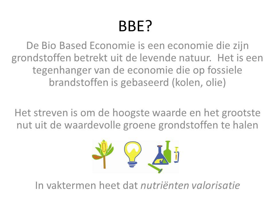BBE. De Bio Based Economie is een economie die zijn grondstoffen betrekt uit de levende natuur.