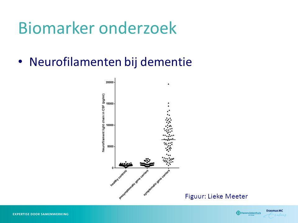 Biomarker onderzoek Neurofilamenten bij dementie Figuur: Lieke Meeter