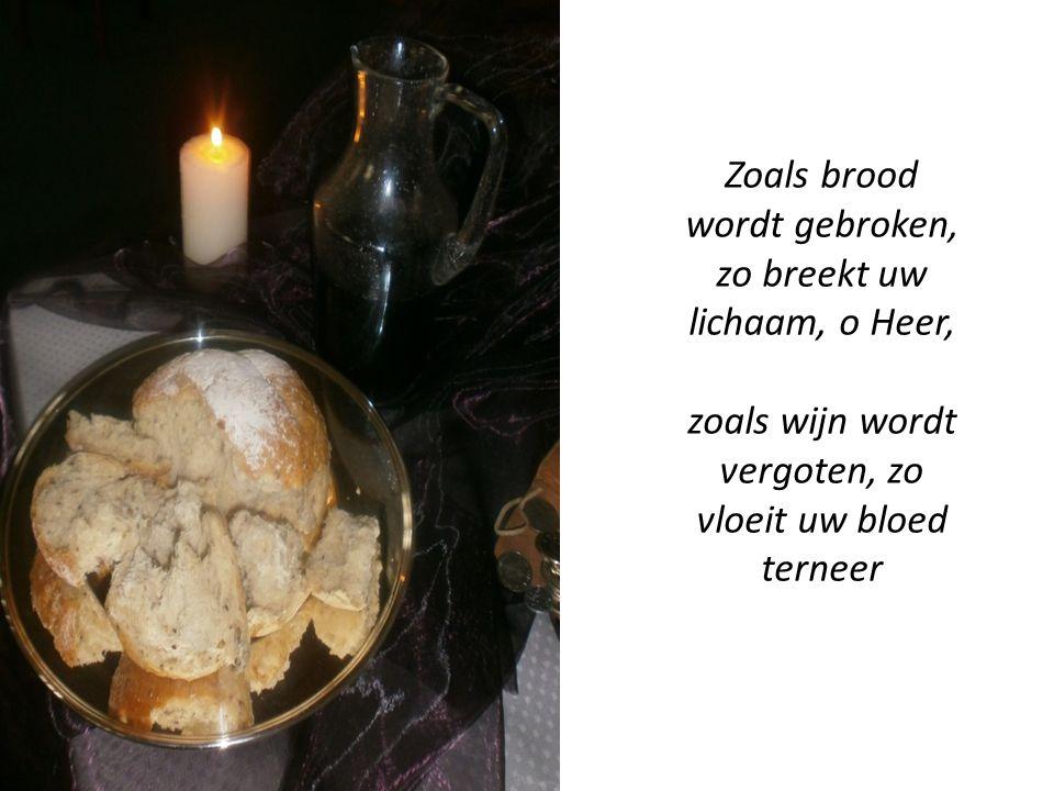 Zoals brood wordt gebroken, zo breekt uw lichaam, o Heer, zoals wijn wordt vergoten, zo vloeit uw bloed terneer