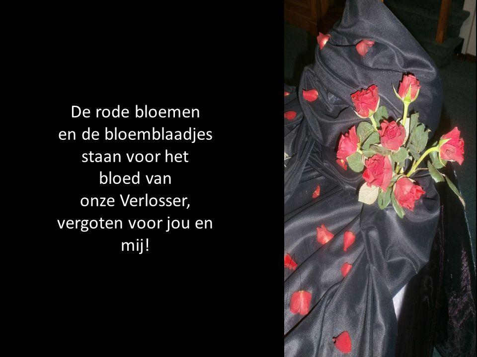 De rode bloemen en de bloemblaadjes staan voor het bloed van onze Verlosser, vergoten voor jou en mij!