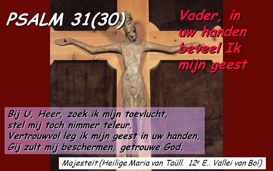 Psalm 31 (30), van David, is er een die het best het lijden van Jezus oproept, zegt de h. Leo. Ofschoon de Psalmist (Jezus en zoveel anderen vandaag)