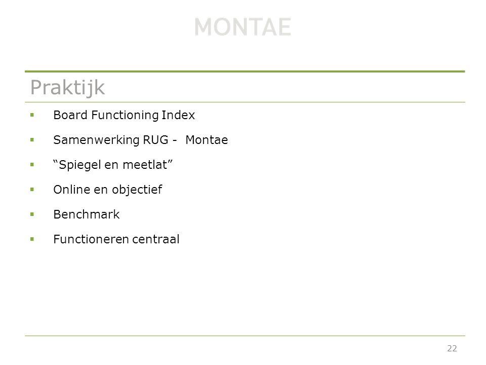 Praktijk  Board Functioning Index  Samenwerking RUG - Montae  Spiegel en meetlat  Online en objectief  Benchmark  Functioneren centraal 22