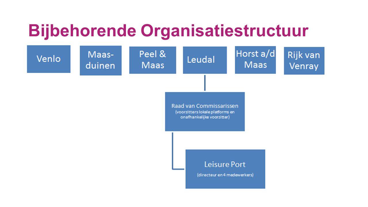 Bijbehorende Organisatiestructuur