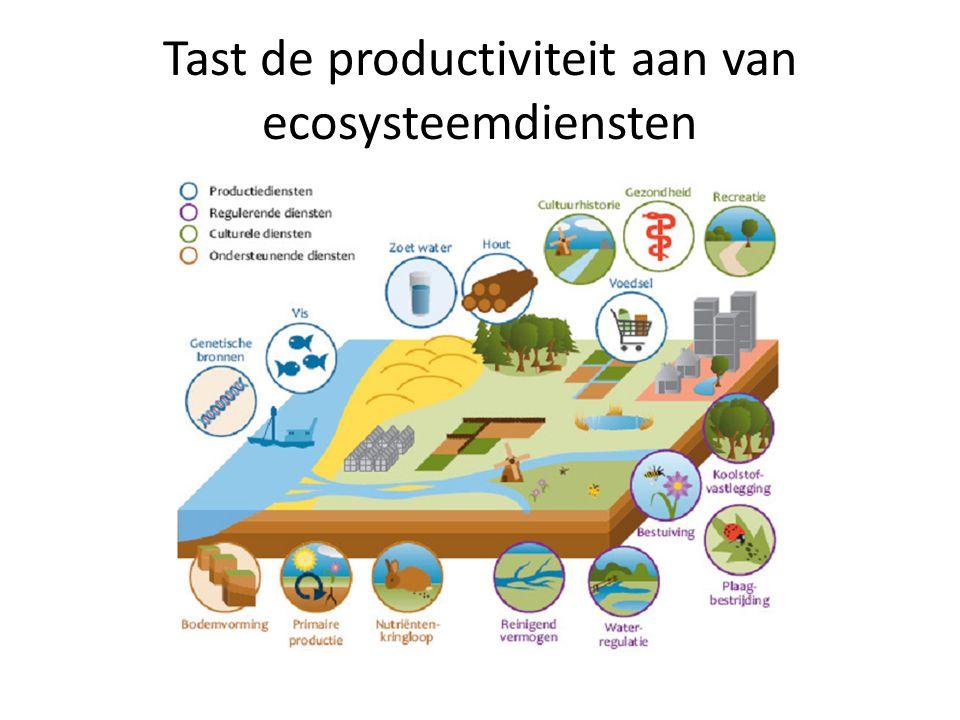 Tast de productiviteit aan van ecosysteemdiensten
