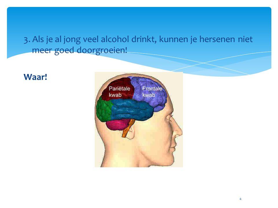 4 3. Als je al jong veel alcohol drinkt, kunnen je hersenen niet meer goed doorgroeien! Waar!