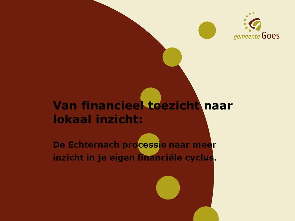 Van financieel toezicht naar lokaal inzicht: De Echternach processie naar meer inzicht in je eigen financiële cyclus.