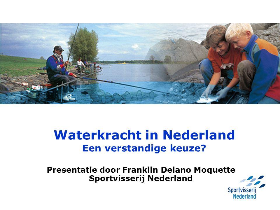 Waterkracht in Nederland Een verstandige keuze? Presentatie door Franklin Delano Moquette Sportvisserij Nederland