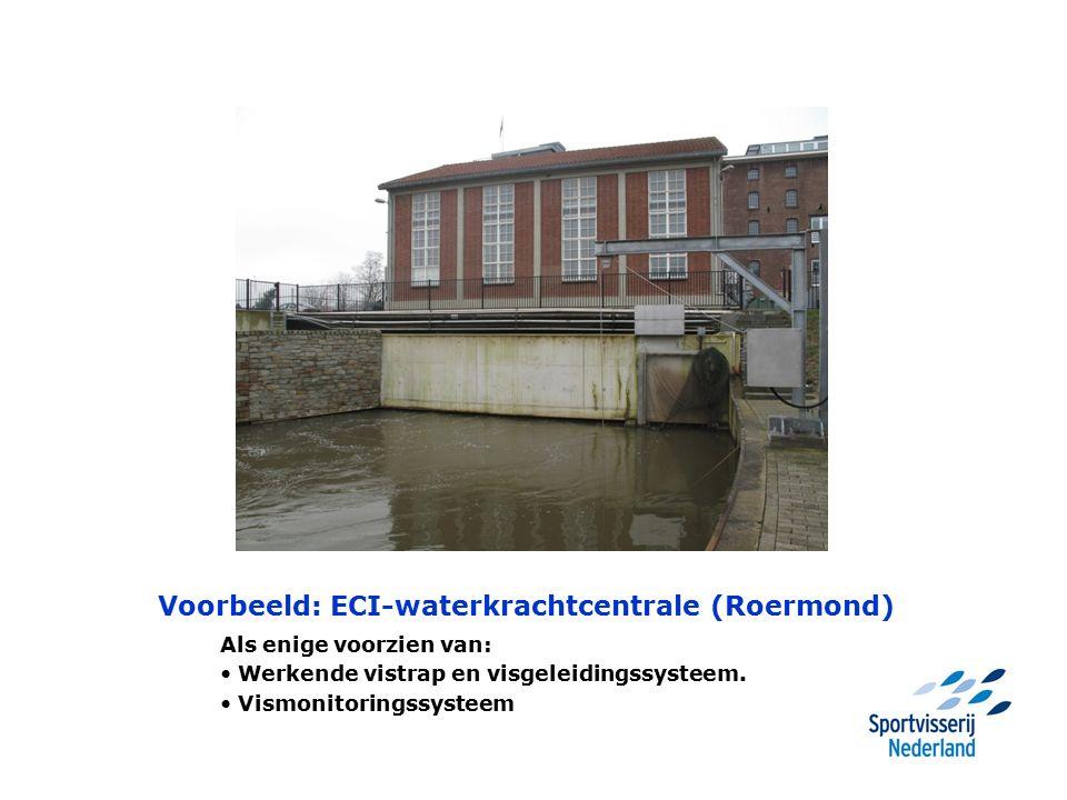 Voorbeeld: ECI-waterkrachtcentrale (Roermond) Als enige voorzien van: Werkende vistrap en visgeleidingssysteem. Vismonitoringssysteem