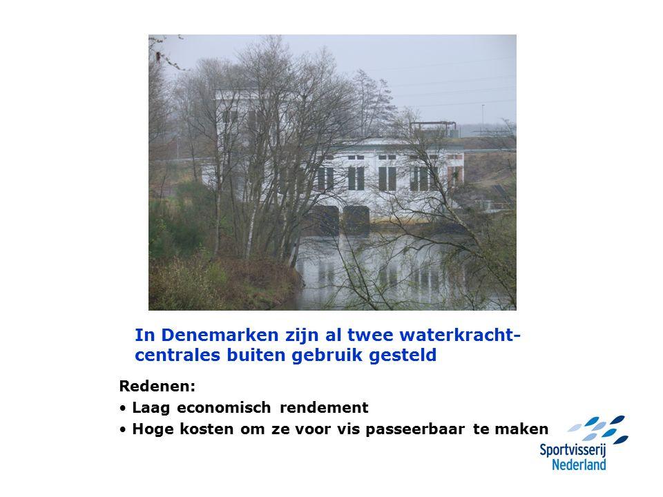 In Denemarken zijn al twee waterkracht- centrales buiten gebruik gesteld Redenen: Laag economisch rendement Hoge kosten om ze voor vis passeerbaar te