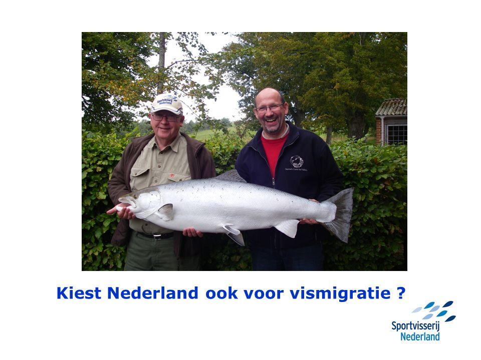 Kiest Nederland ook voor vismigratie ?