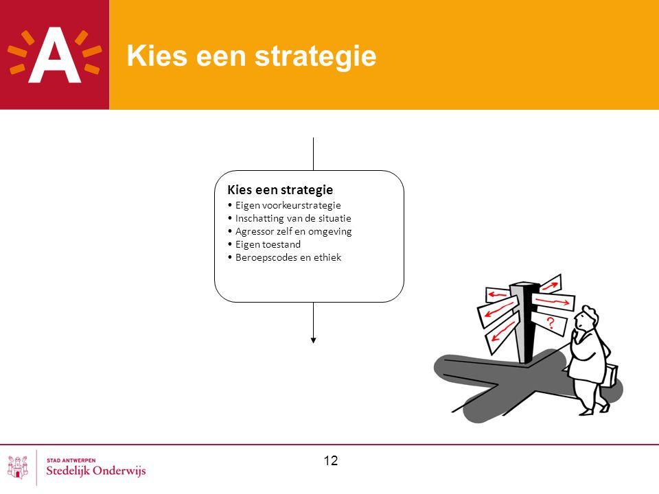 12 Kies een strategie Eigen voorkeurstrategie Inschatting van de situatie Agressor zelf en omgeving Eigen toestand Beroepscodes en ethiek