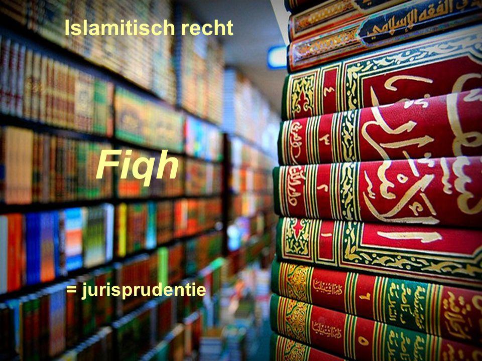 17 Islamitisch recht Fiqh = jurisprudentie