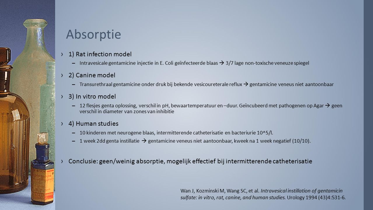 Absorptie ›1) Rat infection model –Intravesicale gentamicine injectie in E.