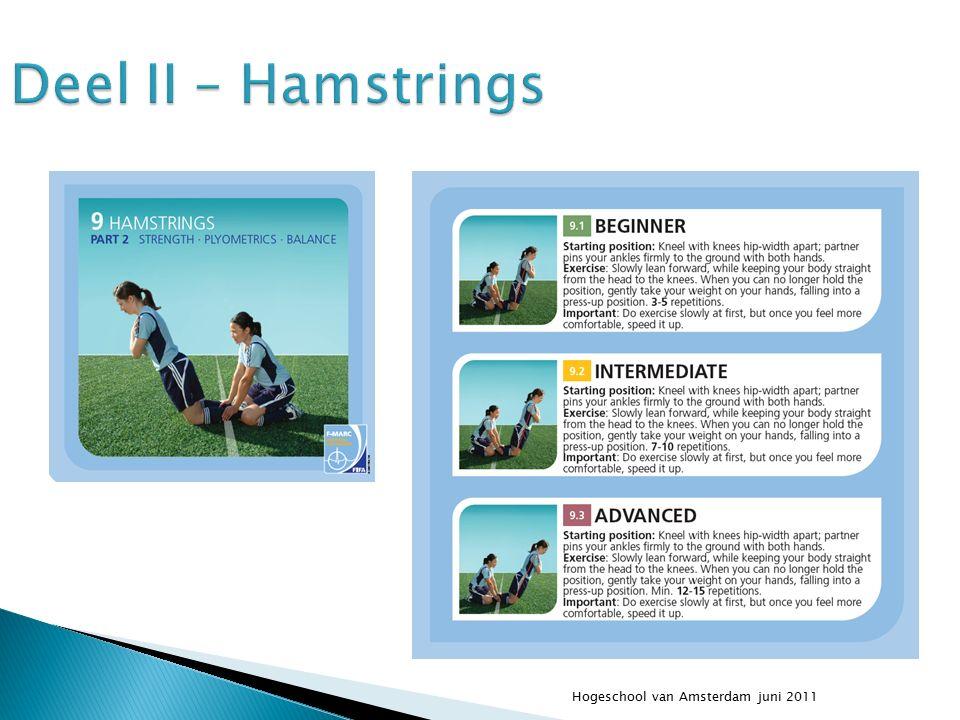 Deel II – Hamstrings