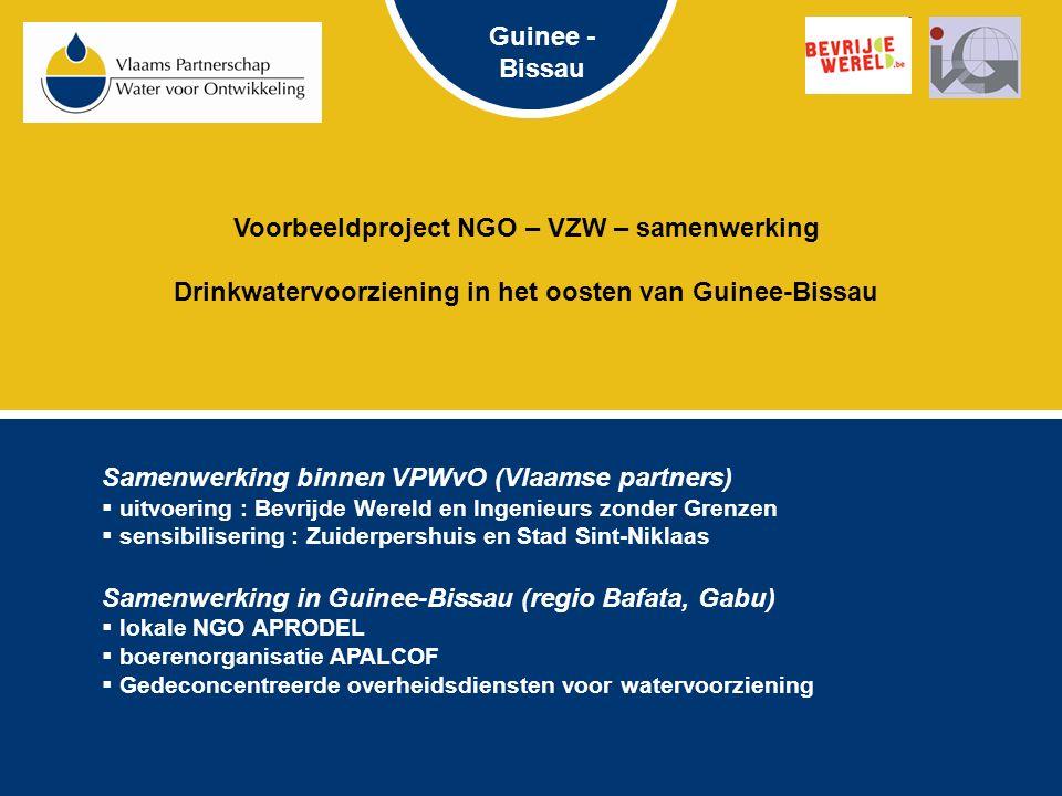 Voorbeeldproject NGO – VZW – samenwerking Drinkwatervoorziening in het oosten van Guinee-Bissau Samenwerking binnen VPWvO (Vlaamse partners)  uitvoering : Bevrijde Wereld en Ingenieurs zonder Grenzen  sensibilisering : Zuiderpershuis en Stad Sint-Niklaas Samenwerking in Guinee-Bissau (regio Bafata, Gabu)  lokale NGO APRODEL  boerenorganisatie APALCOF  Gedeconcentreerde overheidsdiensten voor watervoorziening Guinee - Bissau