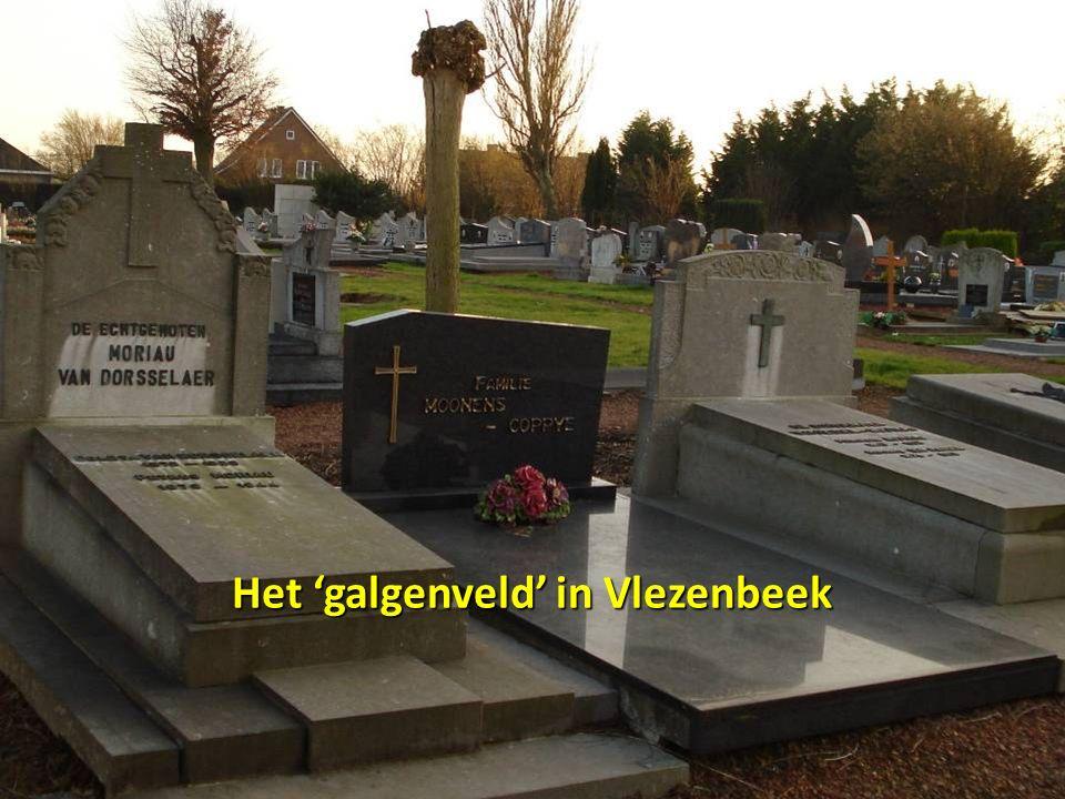 Het 'galgenveld' in Vlezenbeek