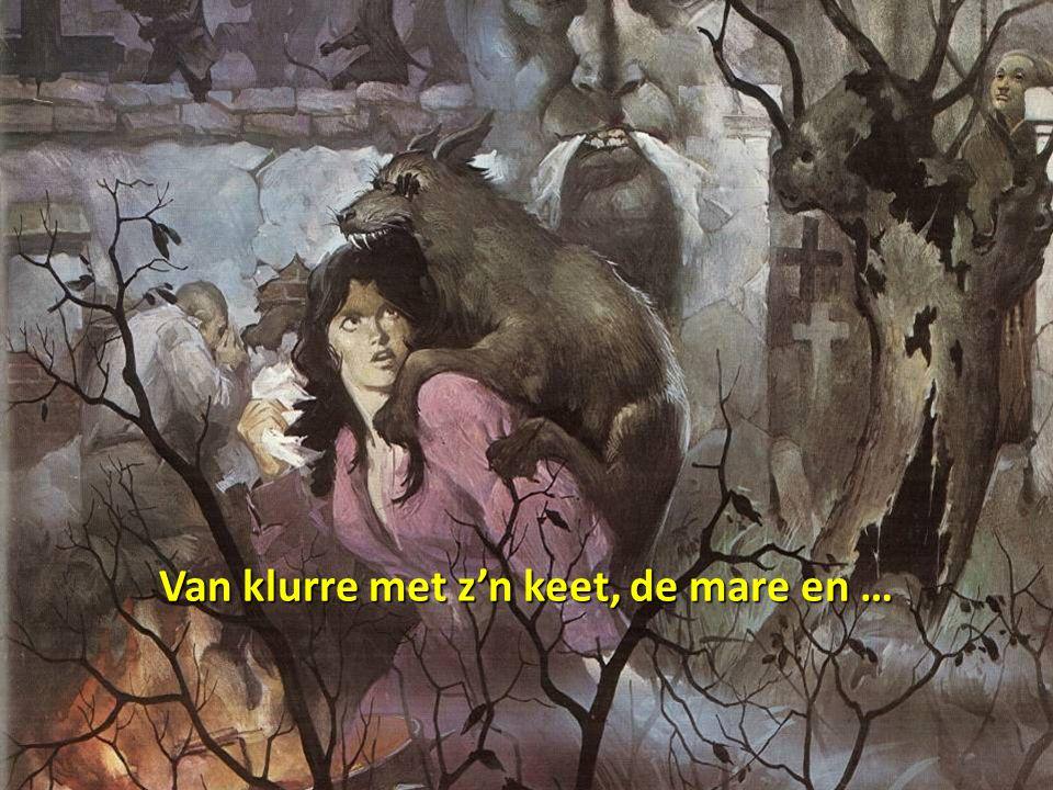 De 'leurreschuur' te Sint-Pieters-Leeuw