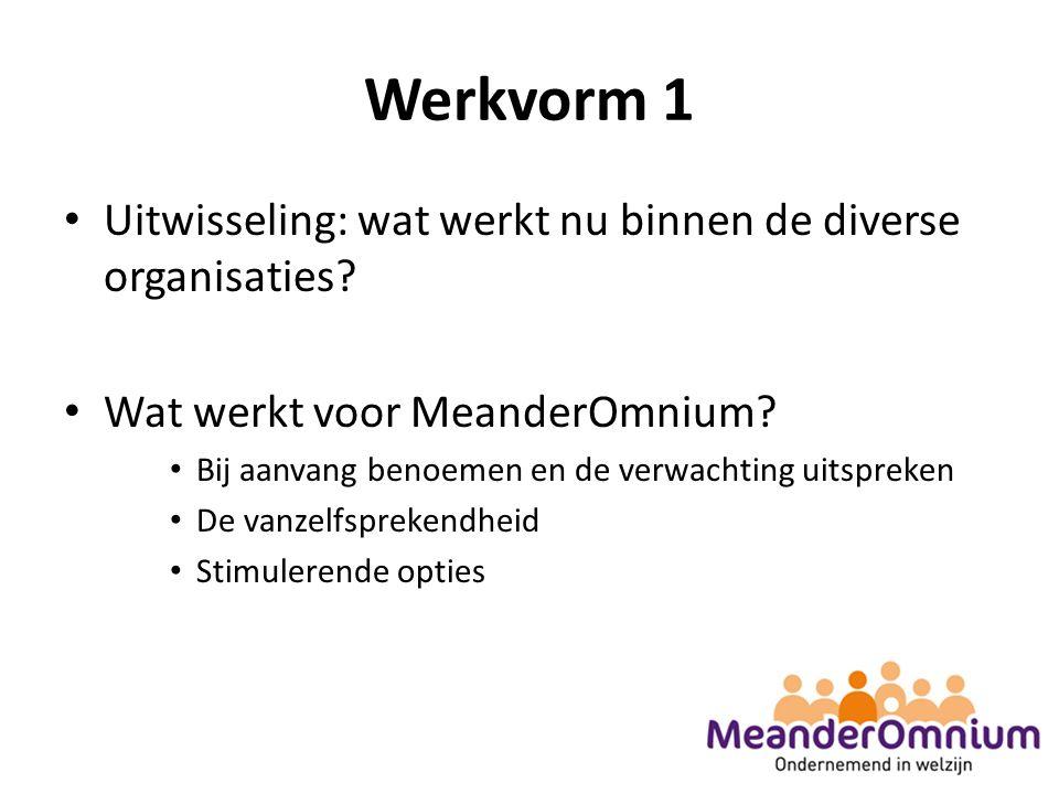Werkvorm 1 Uitwisseling: wat werkt nu binnen de diverse organisaties.