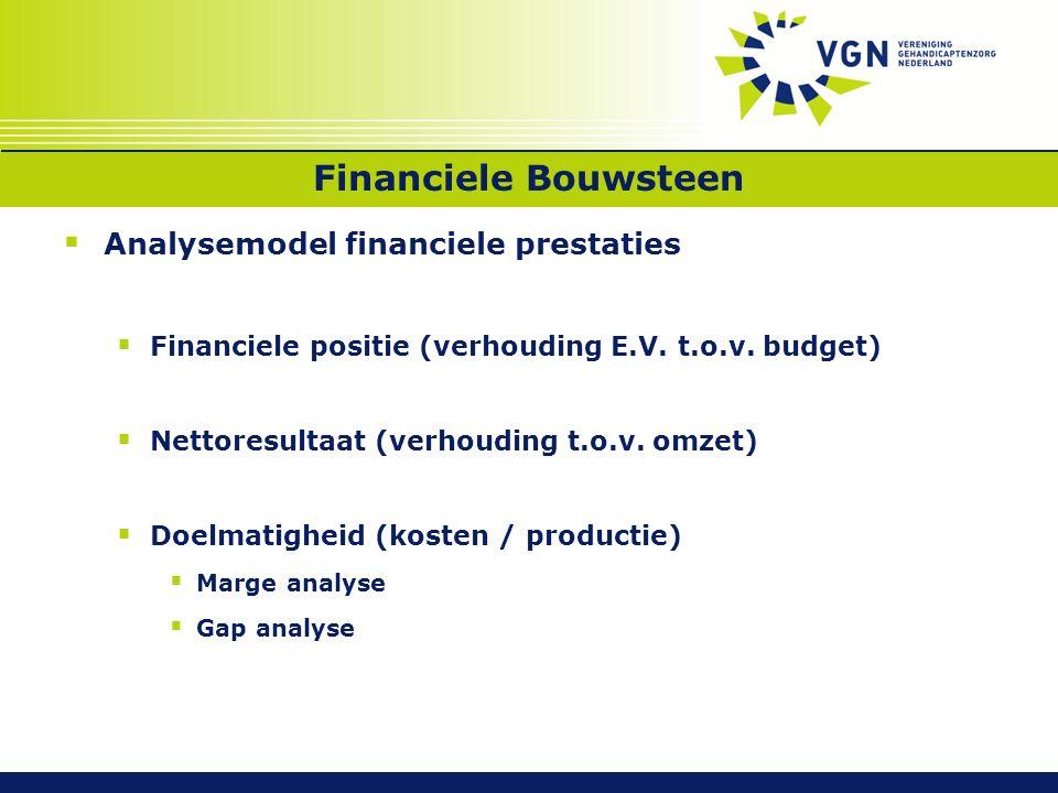 Financiele Bouwsteen  Analysemodel financiele prestaties  Financiele positie (verhouding E.V.