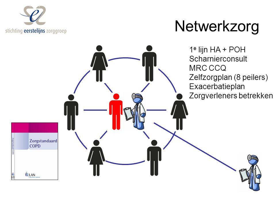 Relaties Zorggroep Verzekeraars Lokale netwerkjes Zorg dichtbij Geprotocolleerd Wie doet wat Regionale afstemming Facilitaire diensten: - contracteren - spiegelen - declareren - organiseren - afspraken - verbeteringen - jaarplan