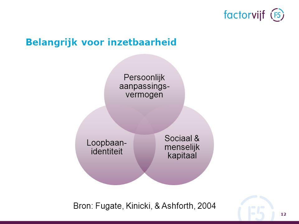 Belangrijk voor inzetbaarheid 12 Persoonlijk aanpassings- vermogen Sociaal & menselijk kapitaal Loopbaan- identiteit Bron: Fugate, Kinicki, & Ashforth