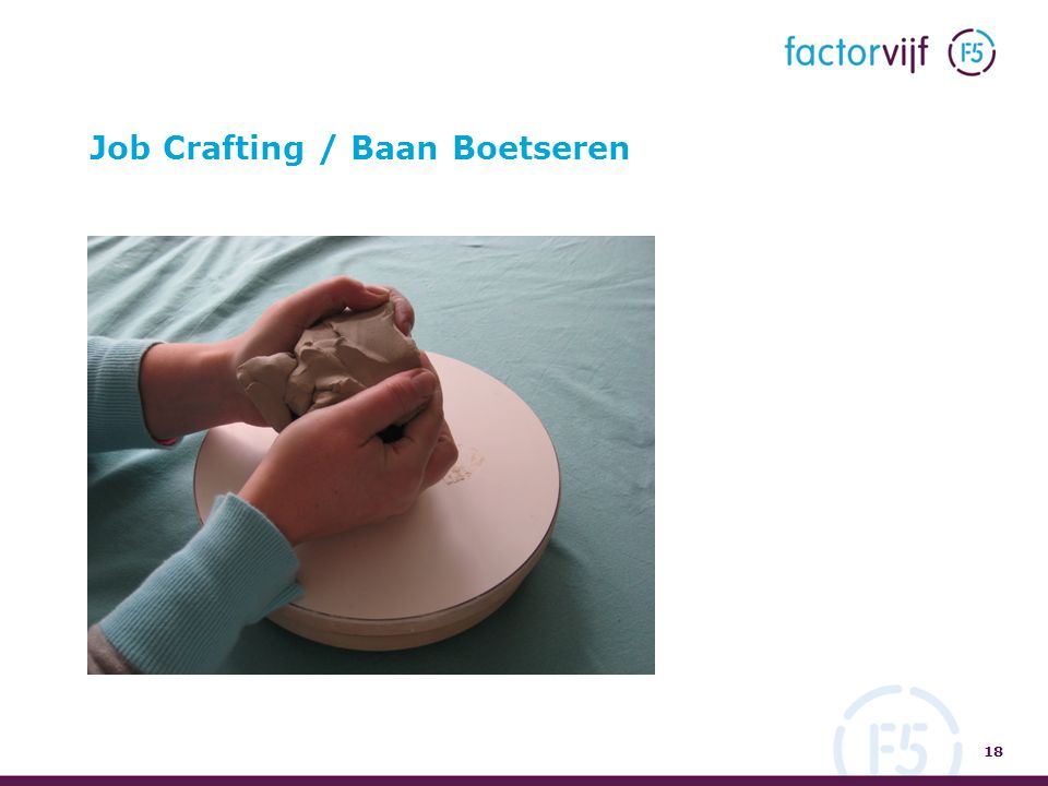 Job Crafting / Baan Boetseren 18