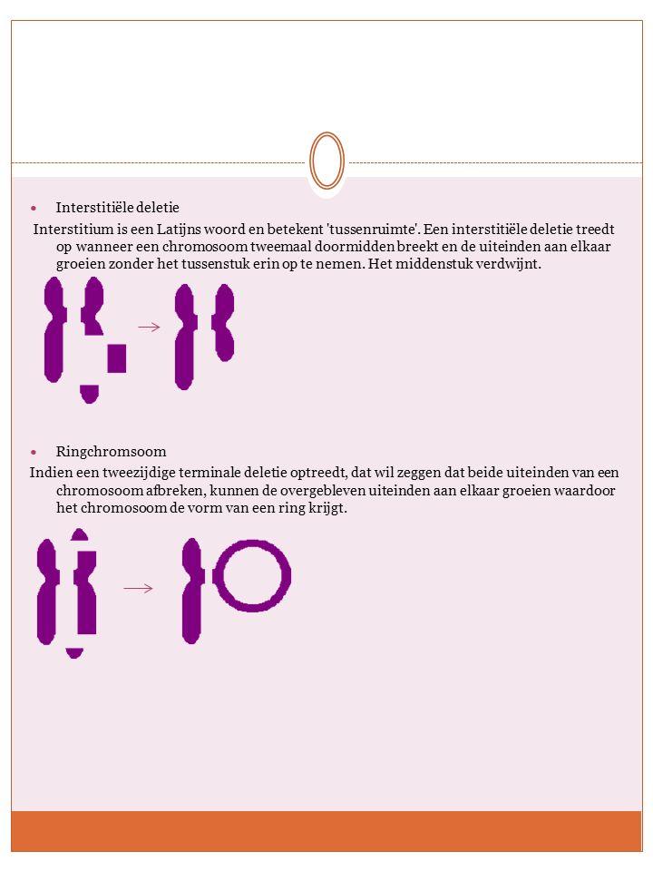 Inversie Als een chromosoom breekt, kan het DNA in omgekeerde volgorde er weer aan vast groeien.