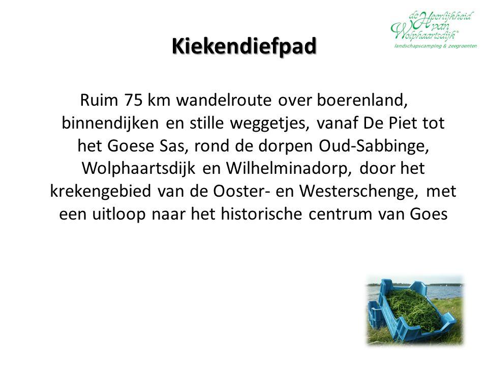Kiekendiefpad Ruim 75 km wandelroute over boerenland, binnendijken en stille weggetjes, vanaf De Piet tot het Goese Sas, rond de dorpen Oud-Sabbinge, Wolphaartsdijk en Wilhelminadorp, door het krekengebied van de Ooster- en Westerschenge, met een uitloop naar het historische centrum van Goes