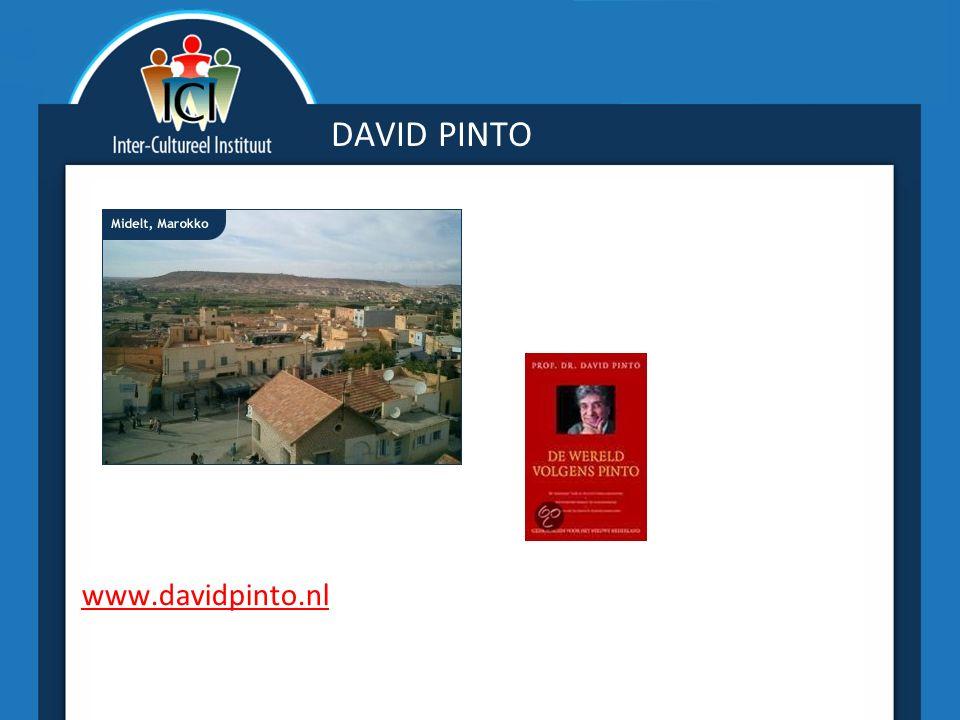 DAVID PINTO www.davidpinto.nl