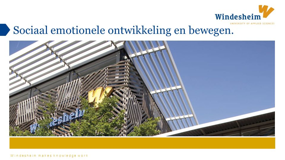 Windesheim makes knowledge work Sociaal emotionele ontwikkeling en bewegen.
