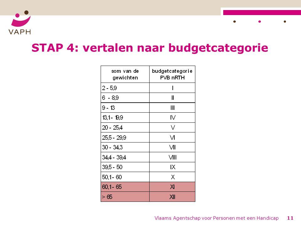 STAP 4: vertalen naar budgetcategorie Vlaams Agentschap voor Personen met een Handicap11