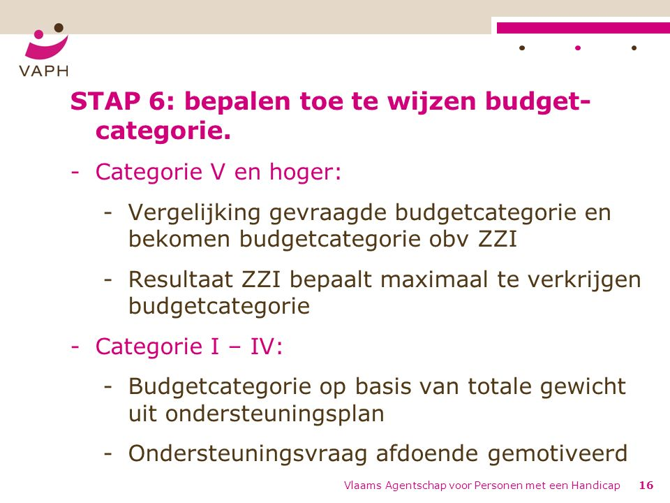 STAP 6: bepalen toe te wijzen budget- categorie.