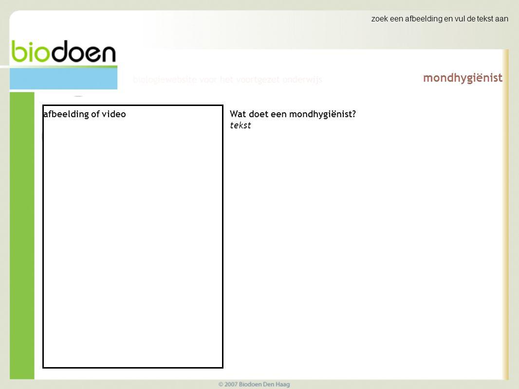 zoek een afbeelding en vul de tekst aan mondhygiënist afbeelding of video Wat doet een mondhygiënist.