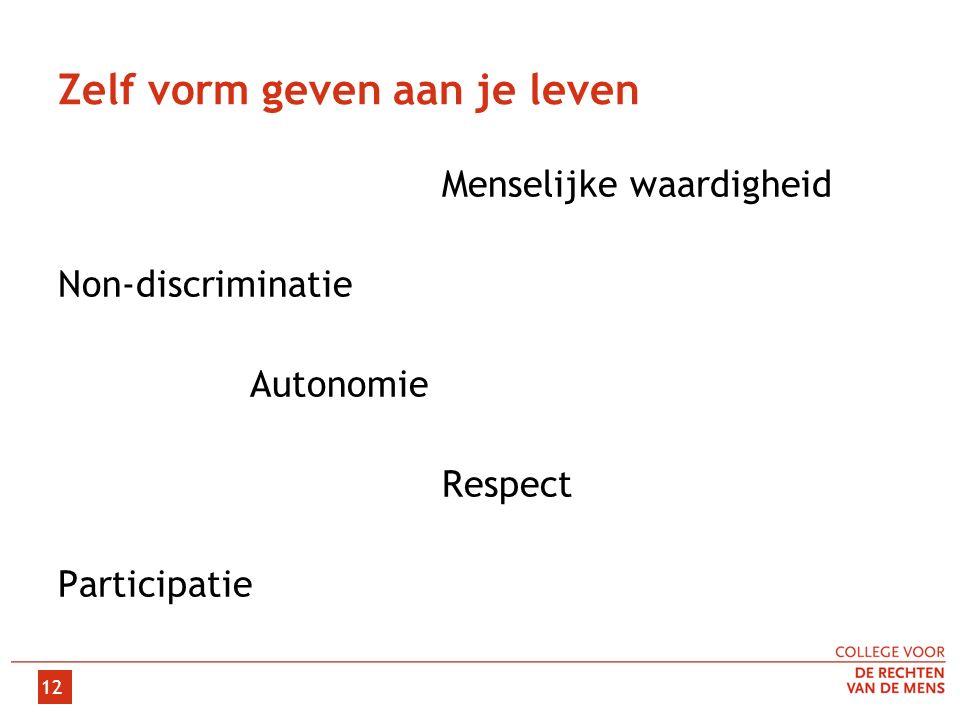 Zelf vorm geven aan je leven Menselijke waardigheid Non-discriminatie Autonomie Respect Participatie 12