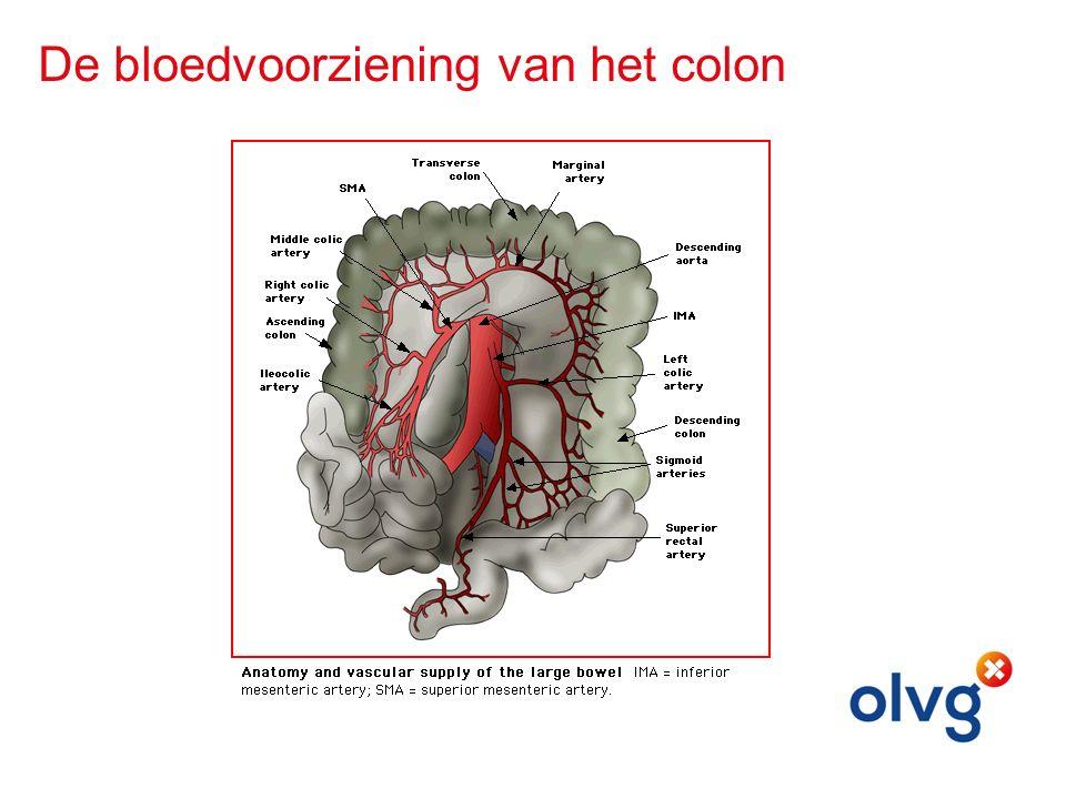 De bloedvoorziening van het colon