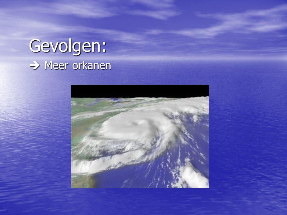 Gevolgen:  Meer orkanen