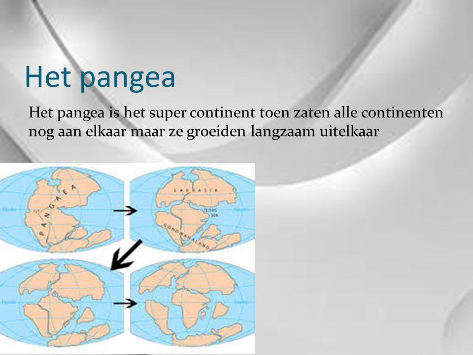 Het pangea Het pangea is het super continent toen zaten alle continenten nog aan elkaar maar ze groeiden langzaam uitelkaar