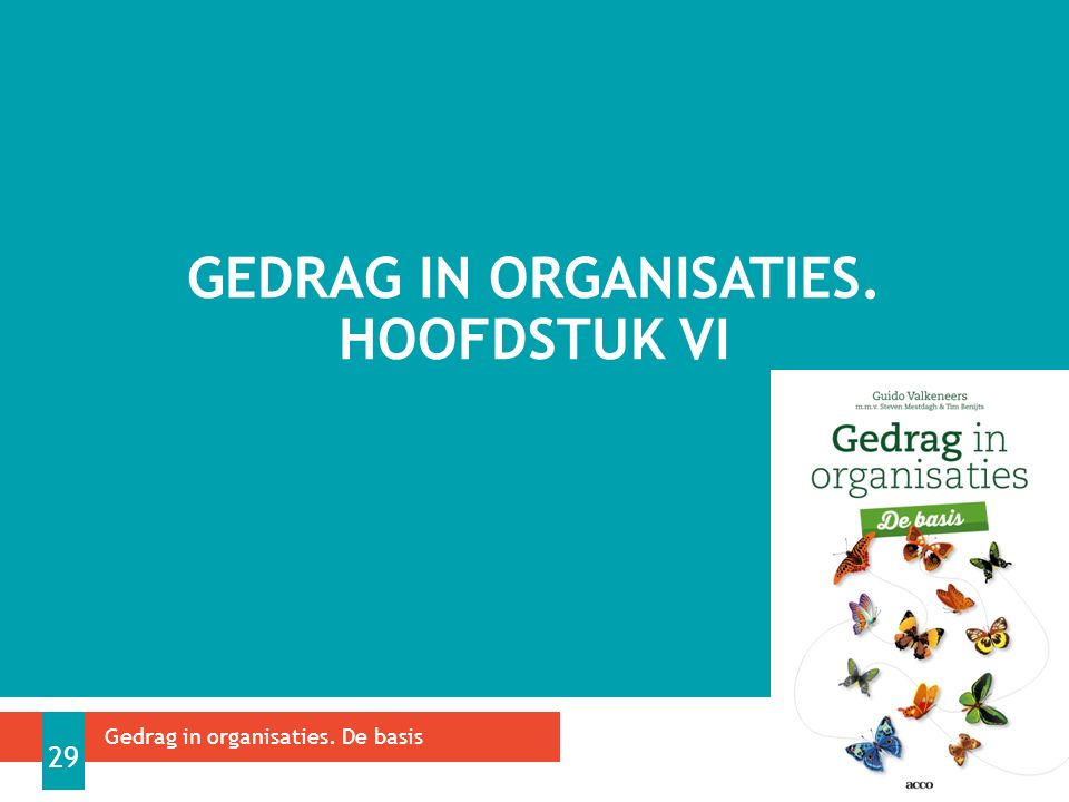 GEDRAG IN ORGANISATIES. HOOFDSTUK VI Gedrag in organisaties. De basis 29