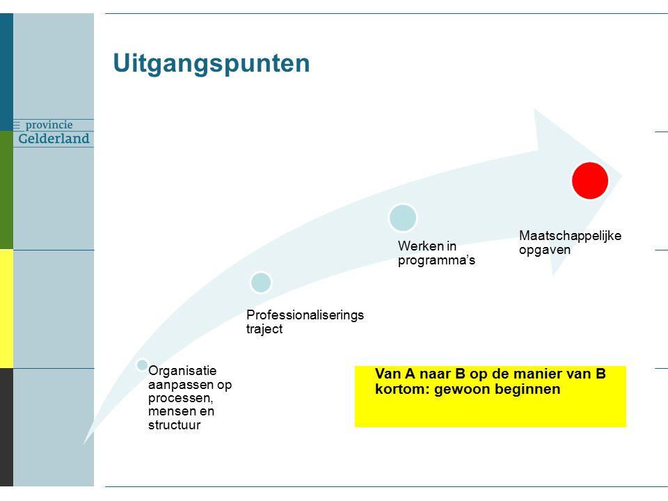 Organisatie aanpassen op processen, mensen en structuur Werken in programma's Maatschappelijke opgaven Van A naar B op de manier van B kortom: gewoon beginnen Uitgangspunten Professionaliserings traject