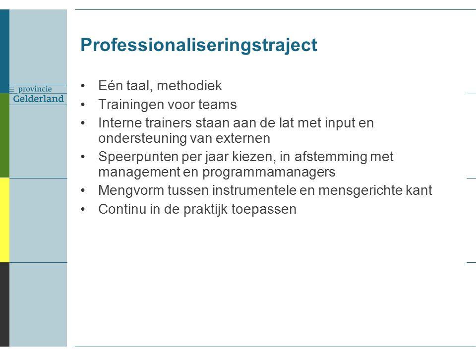Eén taal, methodiek Trainingen voor teams Interne trainers staan aan de lat met input en ondersteuning van externen Speerpunten per jaar kiezen, in afstemming met management en programmamanagers Mengvorm tussen instrumentele en mensgerichte kant Continu in de praktijk toepassen Professionaliseringstraject