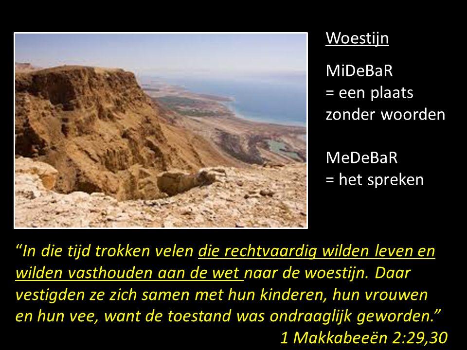 Woestijn MiDeBaR = een plaats zonder woorden MeDeBaR = het spreken In die tijd trokken velen die rechtvaardig wilden leven en wilden vasthouden aan de wet naar de woestijn.