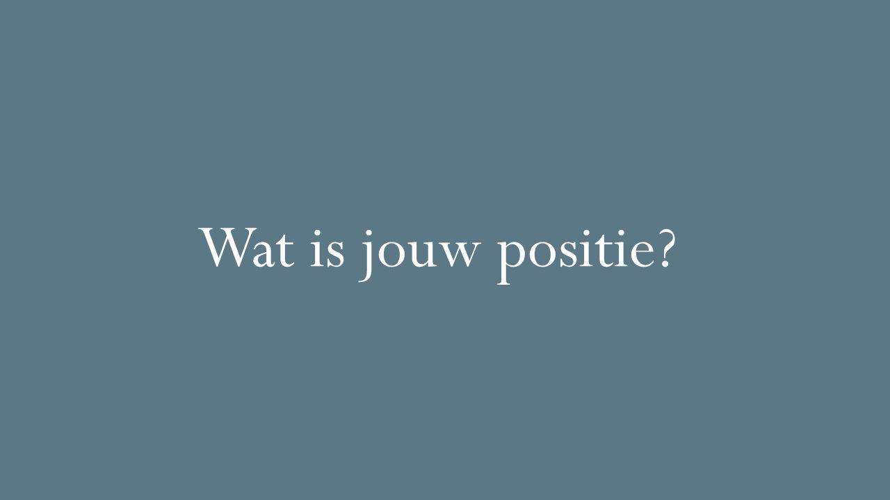 Wat is jouw positie?
