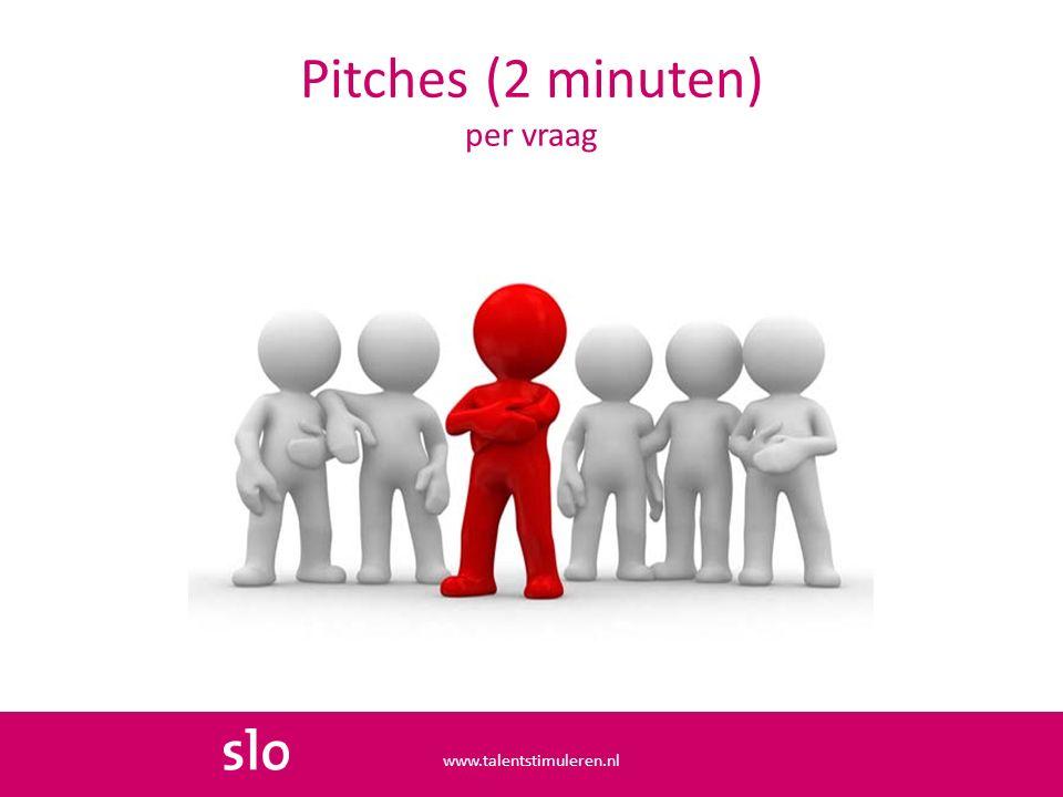Pitches (2 minuten) per vraag www.talentstimuleren.nl