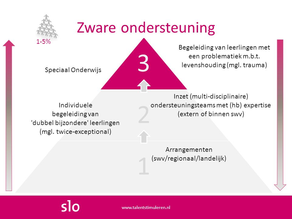 Zware ondersteuning www.talentstimuleren.nl 3 2 1 Individuele begeleiding van dubbel bijzondere leerlingen (mgl.