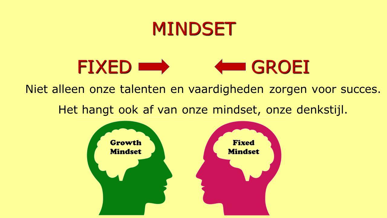 MINDSET FIXED GROEI Niet alleen onze talenten en vaardigheden zorgen voor succes.