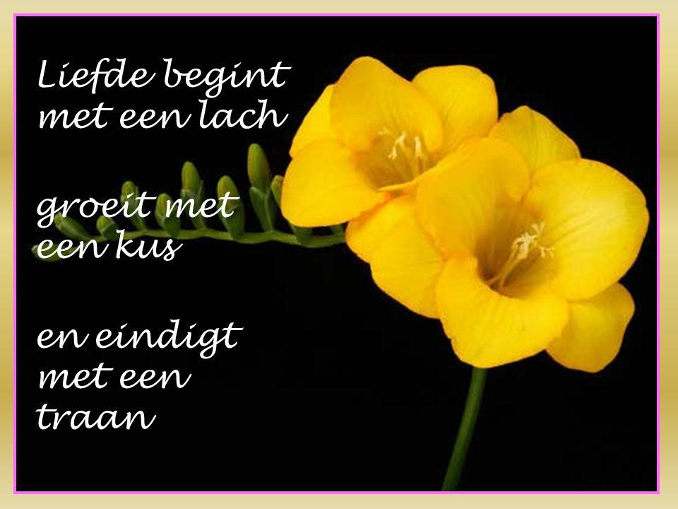 Liefde begint met een lach groeit met een kus en eindigt met een traan