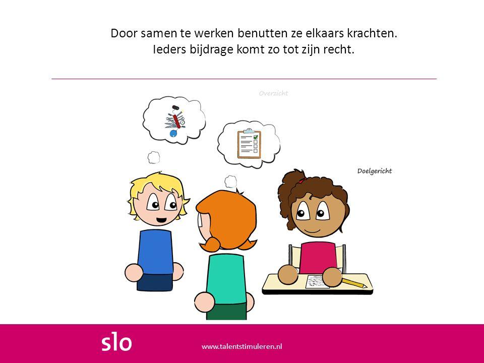 Door samen te werken benutten ze elkaars krachten. Ieders bijdrage komt zo tot zijn recht. www.talentstimuleren.nl