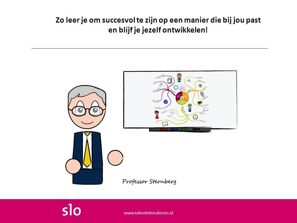 Zo leer je om succesvol te zijn op een manier die bij jou past en blíjf je jezelf ontwikkelen! www.talentstimuleren.nl