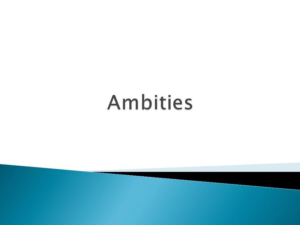 Delft werkt aan SMART doelen (doelen-inspanningen netwerk) SMART/MAGIE-doelen Inspanningen ER-doelen