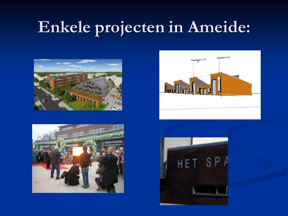 Enkele projecten in Ameide: